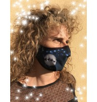 Masque protection covid 19 Noël Traineaux