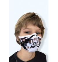 Masque protection covid 19 Chevres